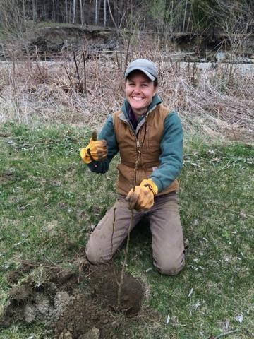 internship - Wildlife Biologist Job Description