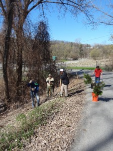 Volunteers planting trees at the Winooski Waste Water Treatment Plant